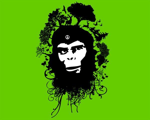 greenpeace2009design
