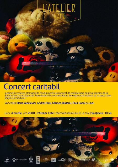 Concert caritabil web