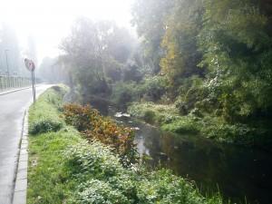 3. Canalul Morii Parcul Rozelor