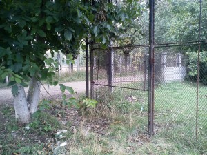 6. garduri Parcurile Babeș și Rozelor