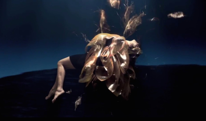bjork-black-lake-video